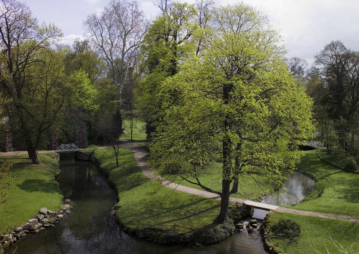Blick in den englischen Landschaftsteil des Gartens von Schloss Schwetzingen; Foto: Staatliche Schlösser und Gärten Baden-Württemberg, Andrea Rachele