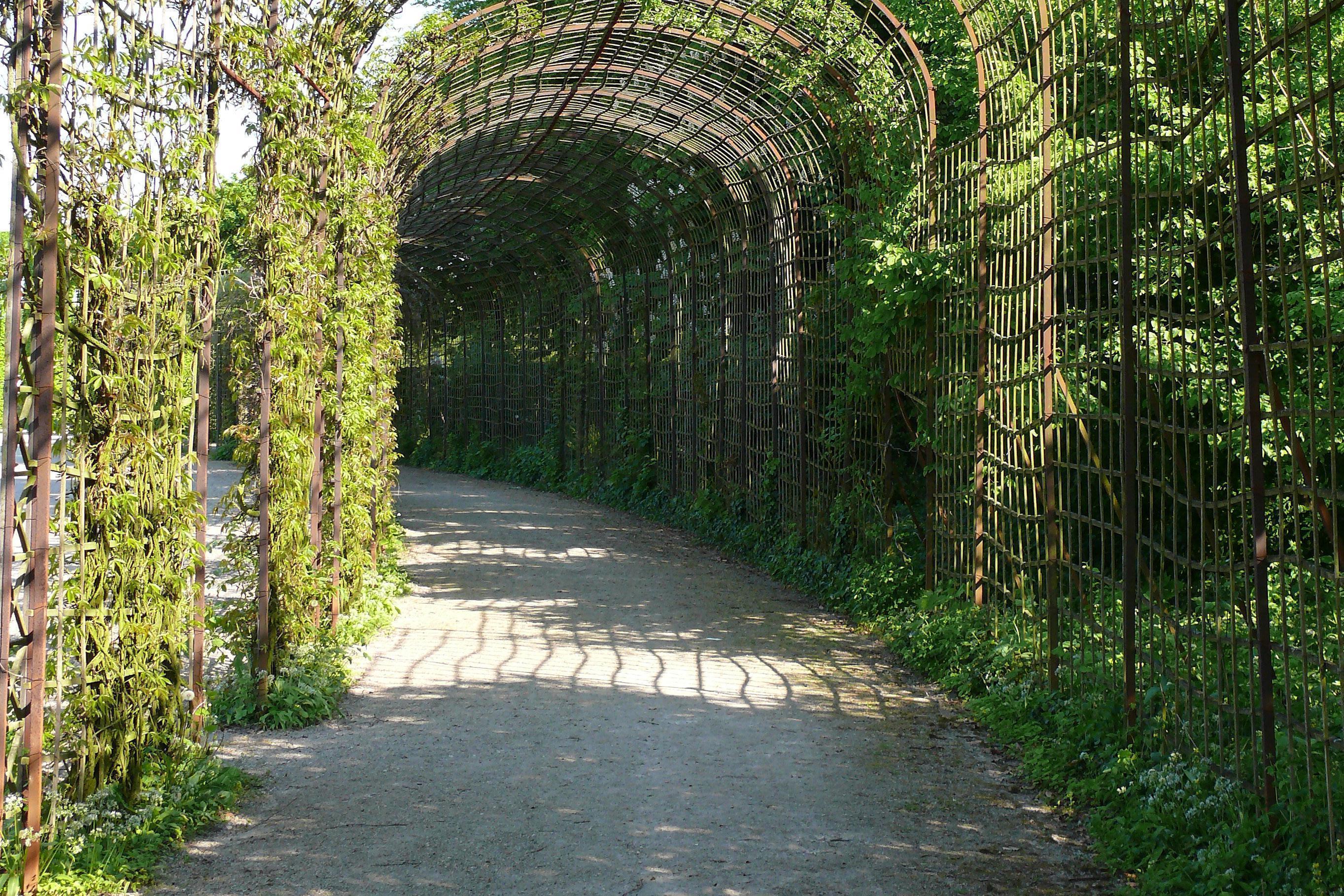Laubengänge am Kreisparterre im Schwetzinger Schlossgarten; Foto: Staatliche Schlösser und Gärten Baden-Württemberg, OV Schwetzingen