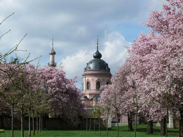 Schwetzingen Palace and Gardens, View of the mosque with cherry trees