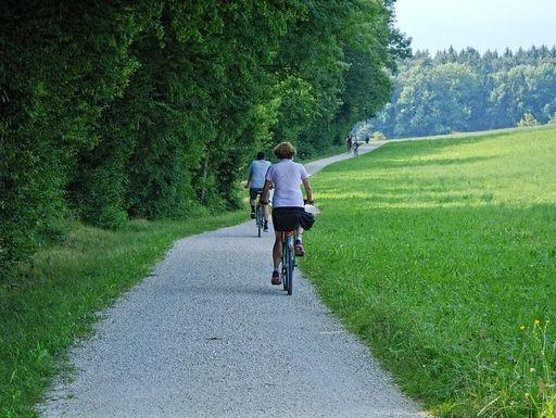 fahrradweg-wald_foto-pixabay-gemeinfrei.jpg
