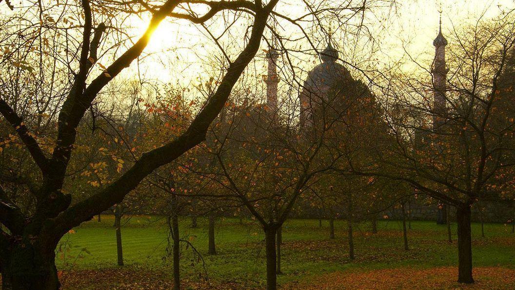Herbststimmung im Schwetzinger Obstgarten; Foto: Pixabay, gemeinfrei