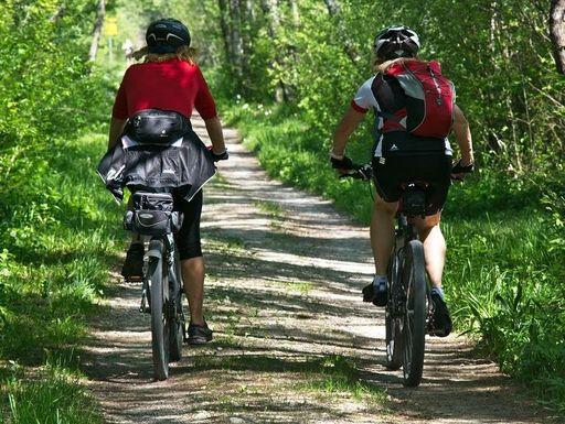 fahrradfahrerinnen-wald_foto-pixabay-gemeinfrei.jpg