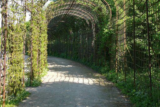 Laubengänge am Kreisparterre im Schwetzinger Schlossgarten