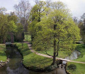 Schloss und Schlossgarten Schwetzingen, Garten; Foto: Staatliche Schlösser und Gärten Baden-Württemberg, Andrea Rachele