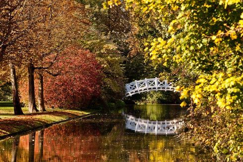 Schwetzingen Palace and Gardens, Bridge in fall